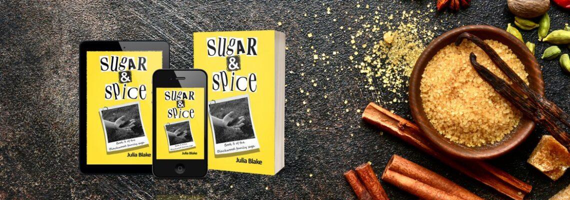 Sugar and Spice book image