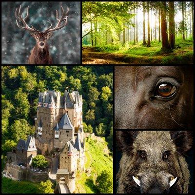 erinsmore collage1